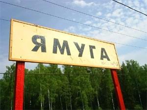 Погода козьмодемьянск на 3 дня